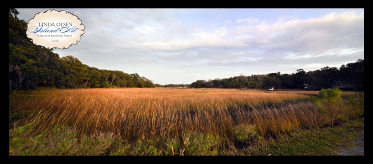 Last weekend I rush to take photos at a very pink sunset by the river. By the time I got there, the colors had faded but the vista landscape of the marsh behind me was beautiful.  I actually shot three shots of this grand view and cloned them together so you could see what I saw. Even with a 14mm lens, I could not capture the entire scene with one shot.