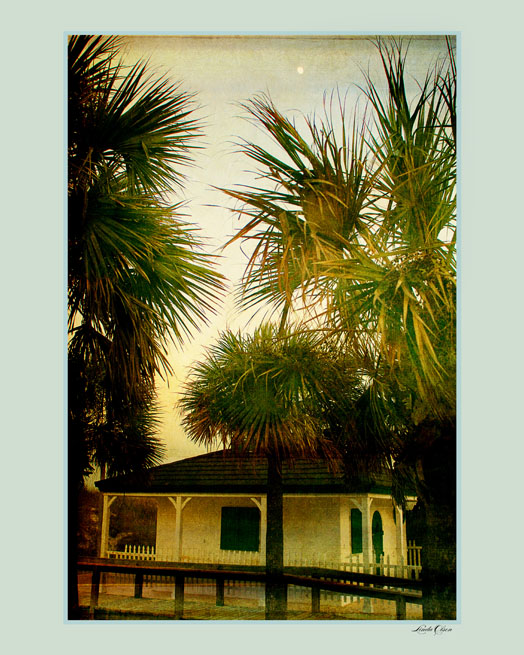 "I live in this lovely little ""island"" peninsula of Neptune Beach. This is an image I took while shooting a wedding at One Ocean. I then hand tinted the image. Love the little moon peeping out from the palm. Purchasing fine art prints online is easy.http://linda-olsen.artistwebsites.com/"