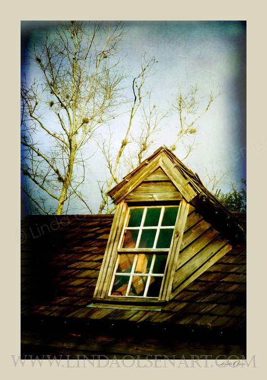 This is an image I shot and maniputed of a high attic window in St. Augustine. I liked the trees in the sky especially