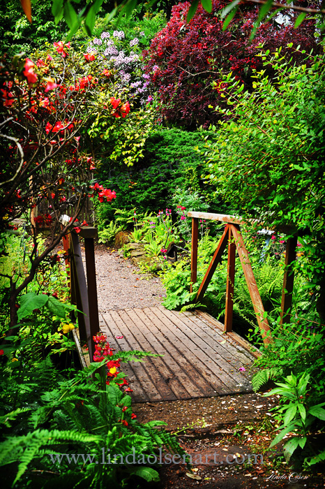 path through garden