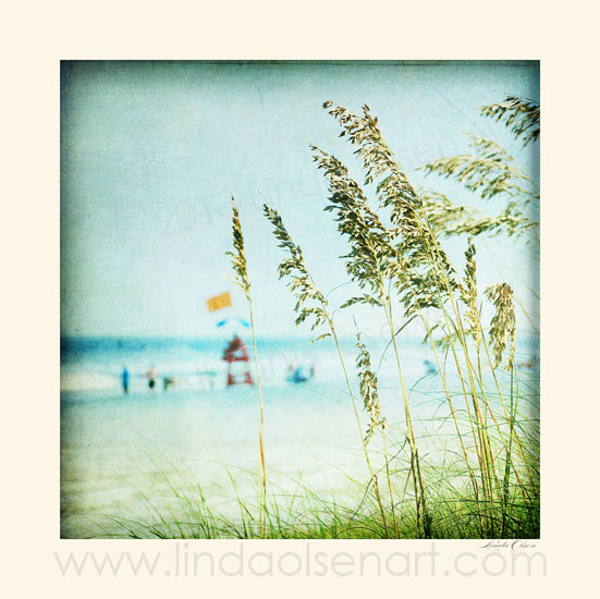 Summer is here and the sea oats are just starting to bloom. This photo illustration has been tinted and toned and since it is square, would be nice on a canvas. Can be printed any size by special order.