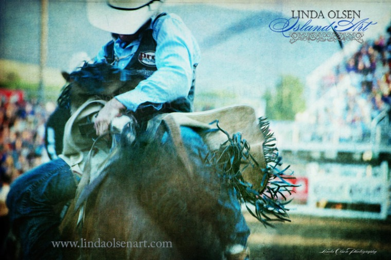 Livingston Rodeo Charge