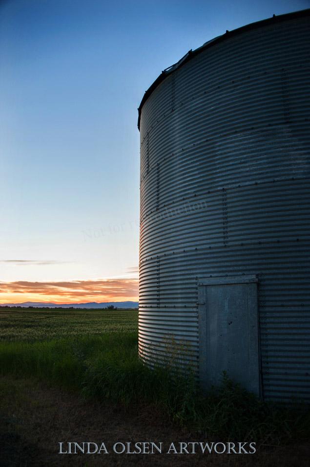 Montana016