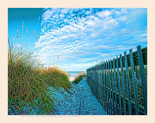 Stick fence on Florida