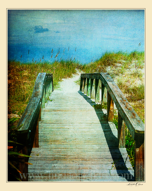 As many times as I walk these paths, I still find solice in knowing that the wooden planks are leading to the beach. Art prints on fine art papers are available. Just ask.