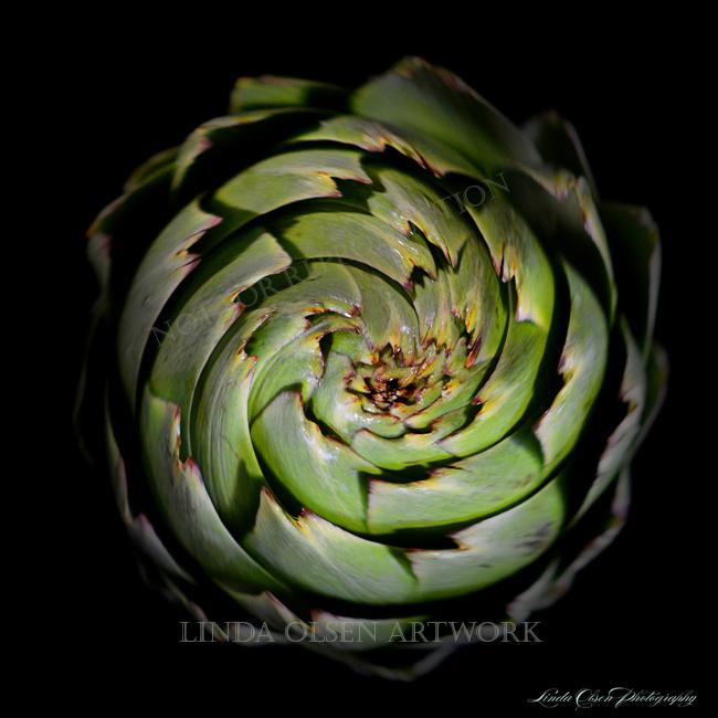 artichoke swirl