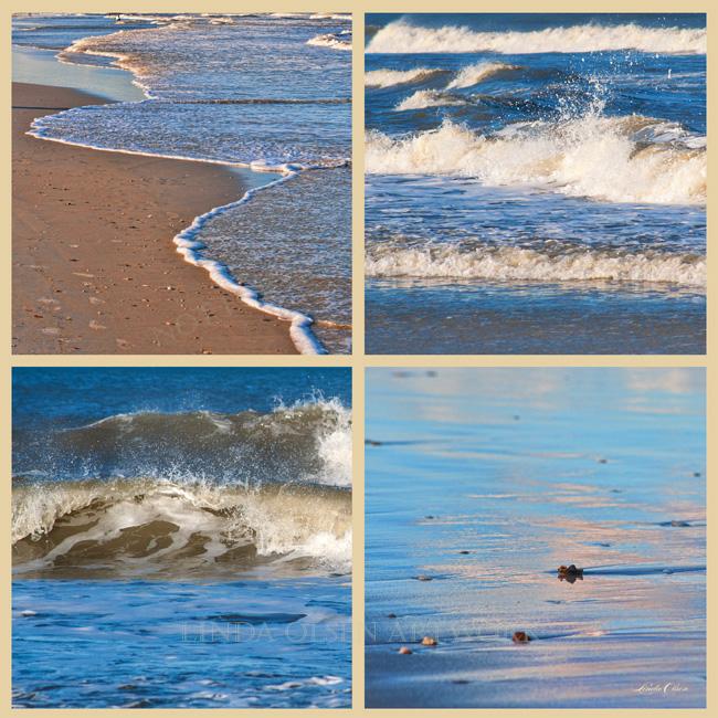 surf cameos