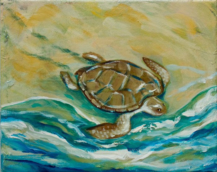 sea turtle 10x8