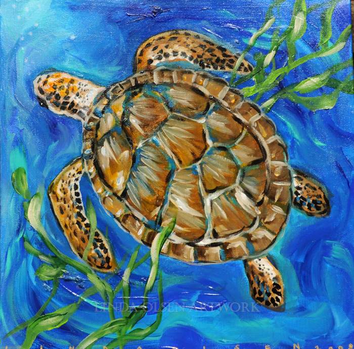 Sea Turtle 12x12