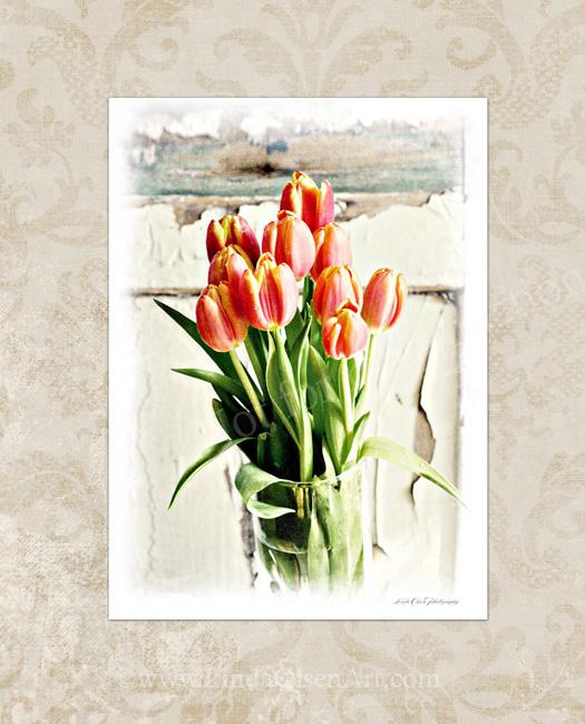 Tulips Shabby