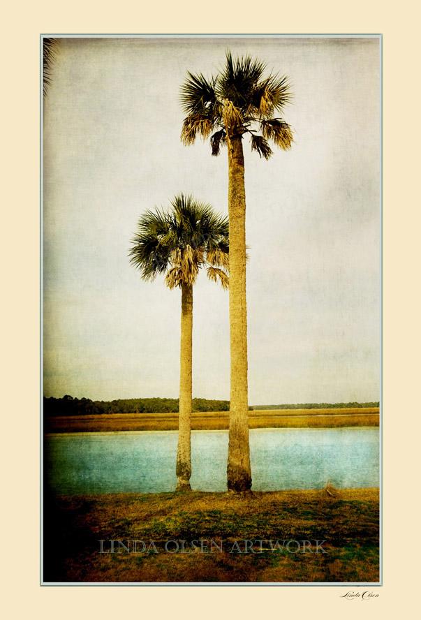Sista Palms 20x30