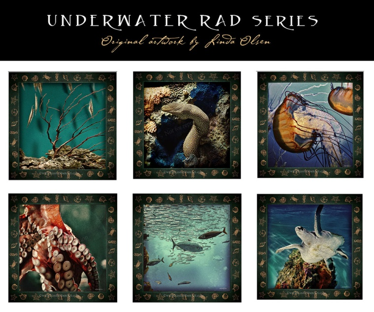 underwater RAD series