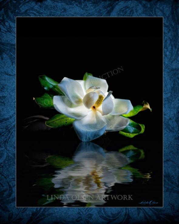 Magnolia glow print