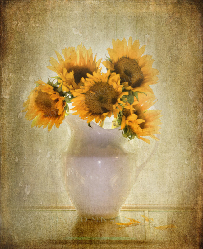 sunflower elegance2