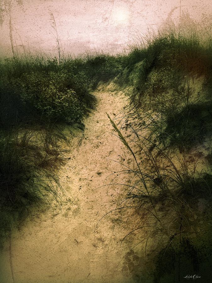 walk through dunes
