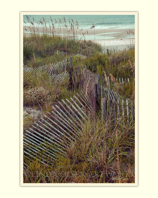 Stick Fence Ocean 14