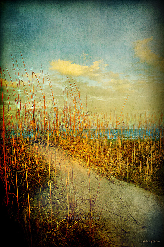 """I have these canvas giclees on professional firm board and gallery wrap of 1.5"""" at 20x30"""". They look beautiful on a wall and show the uniqueness of the beach and waterway of north Florida. If interested, I will sell for 225.00 each plus shipping. This is reduced from gallery prices."""