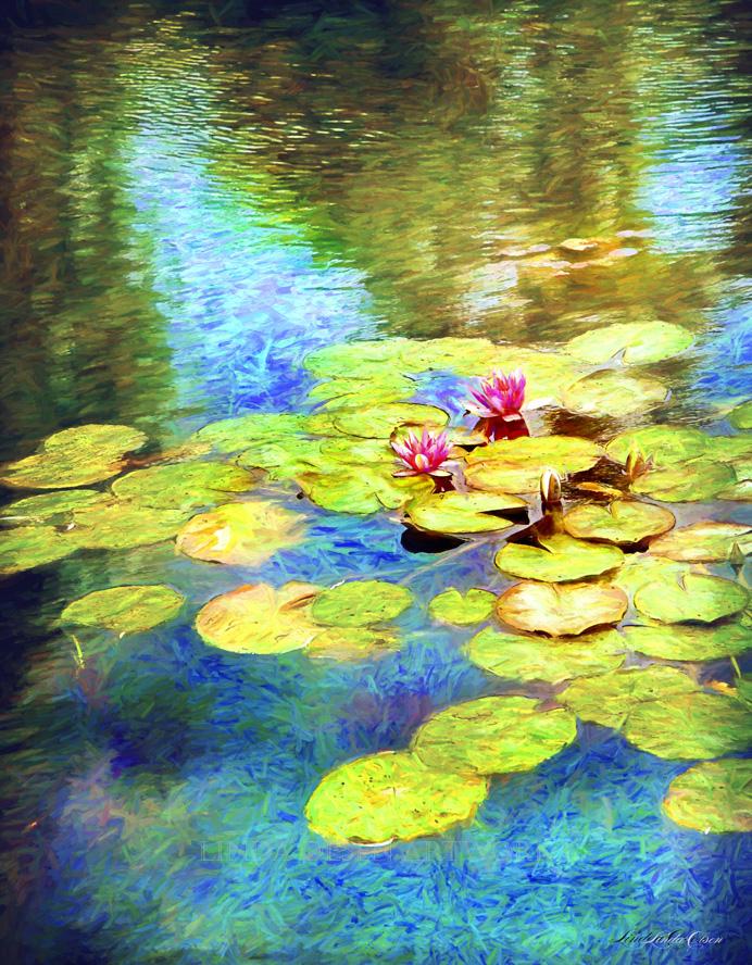 Melancholy Lilypads cez