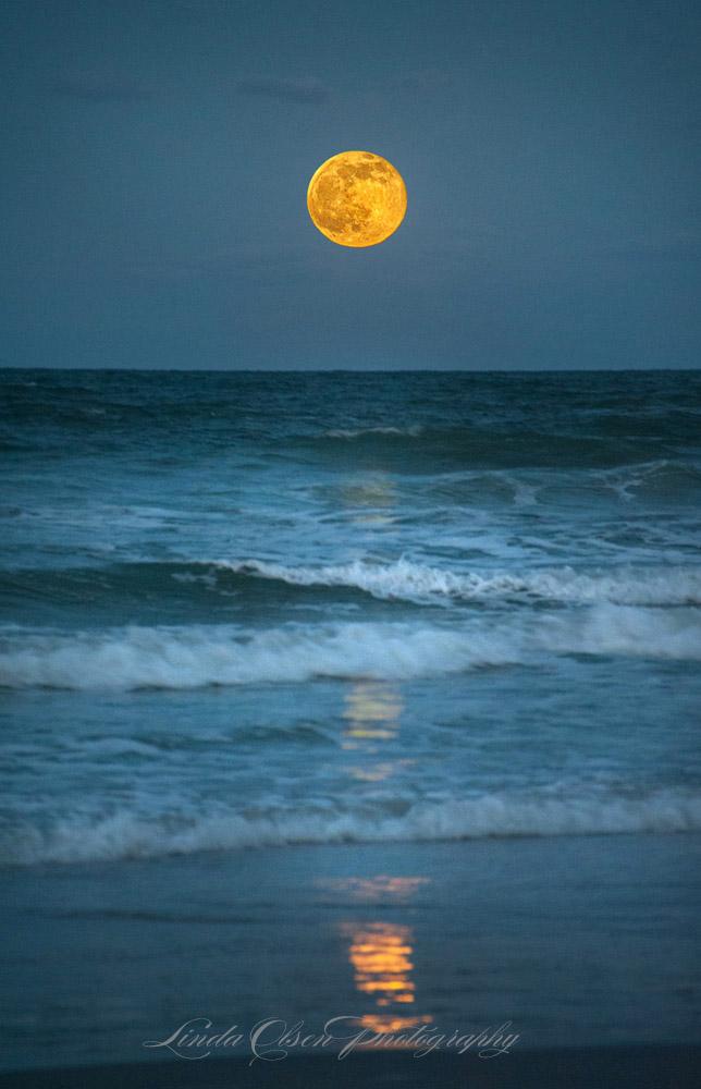 aLD7_1553 moon