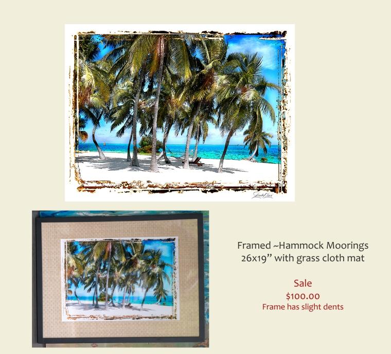 Hammock in Palms