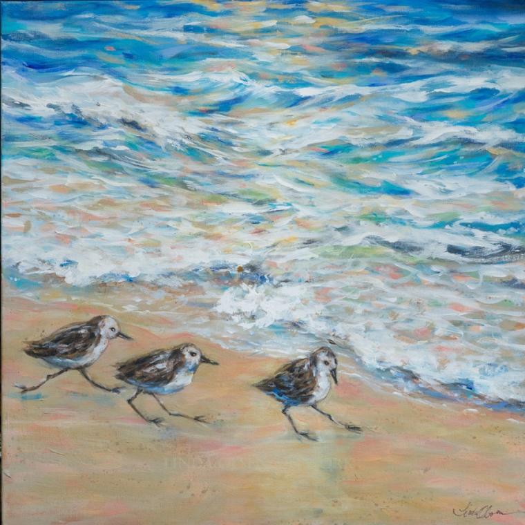 Sanderlings Running 24x24