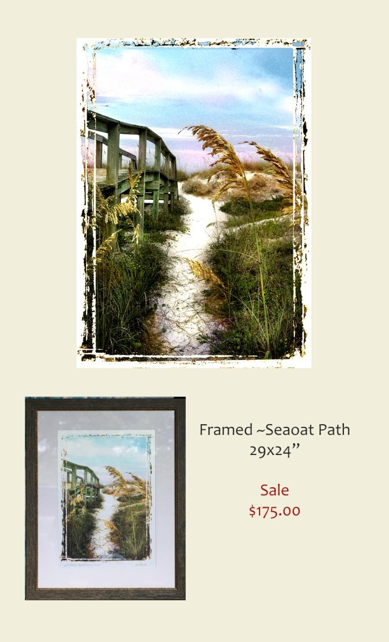Seaoats path
