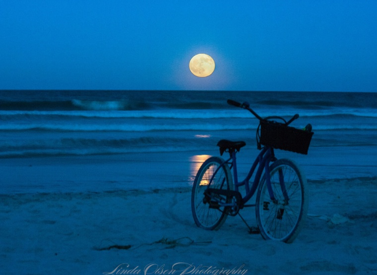 When there is a full moon, my friends meet on the beach to watch it rise from the horizon. Everyone brings their own chairs, snacks and cocktails and we visit for a couple hours. A few of us enjoyed the warm surf and swam in the moonlight. Glorious!!