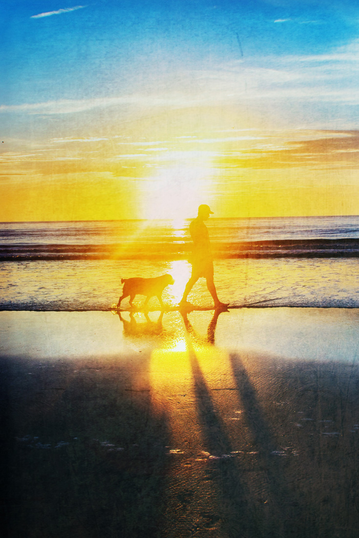 Walking Dog Sunrise