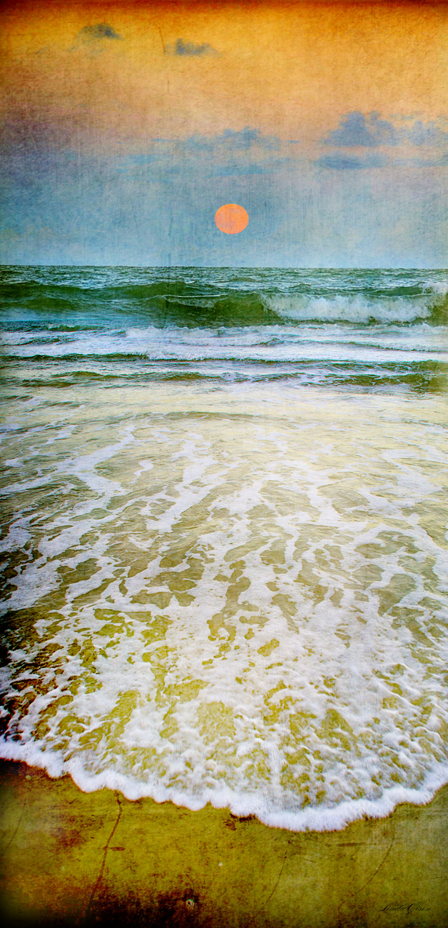 "I love shooting but I also love the creative opportunities allowed in post production. Always start with a good high res photo and then add grunge textures and tints to some areas. I feel that this gives another emotion and interest. Just sold two canvases 20x30"" of shell and golden dune. I can make acrylic, metal and canvas prints any size."