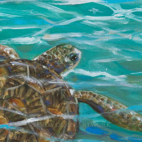 sea-turtle-dream-detail