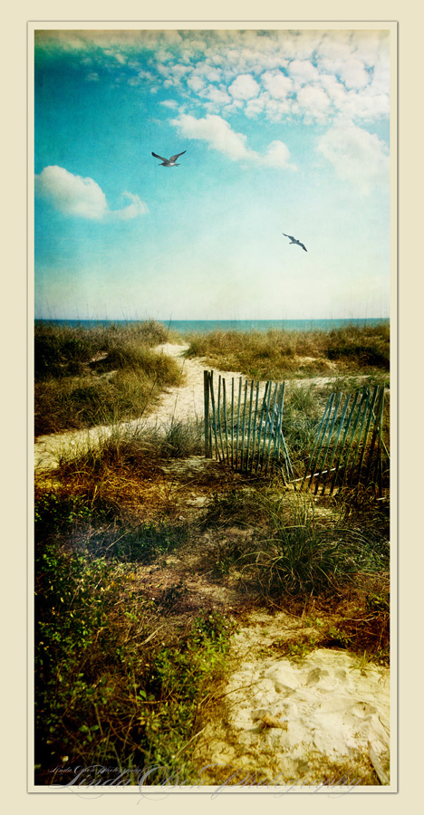 "While up in Fernandina Beach (Amelia Island), I shot this and today added textures and  tints  after combining 3 images together for the composition I wanted. I would like to have this printed on Aluminum..  Called ""Stick Fences Fernandina""."